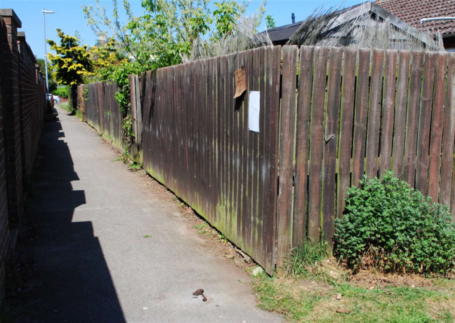 Grantham alley turned into a no-go area by dog mess