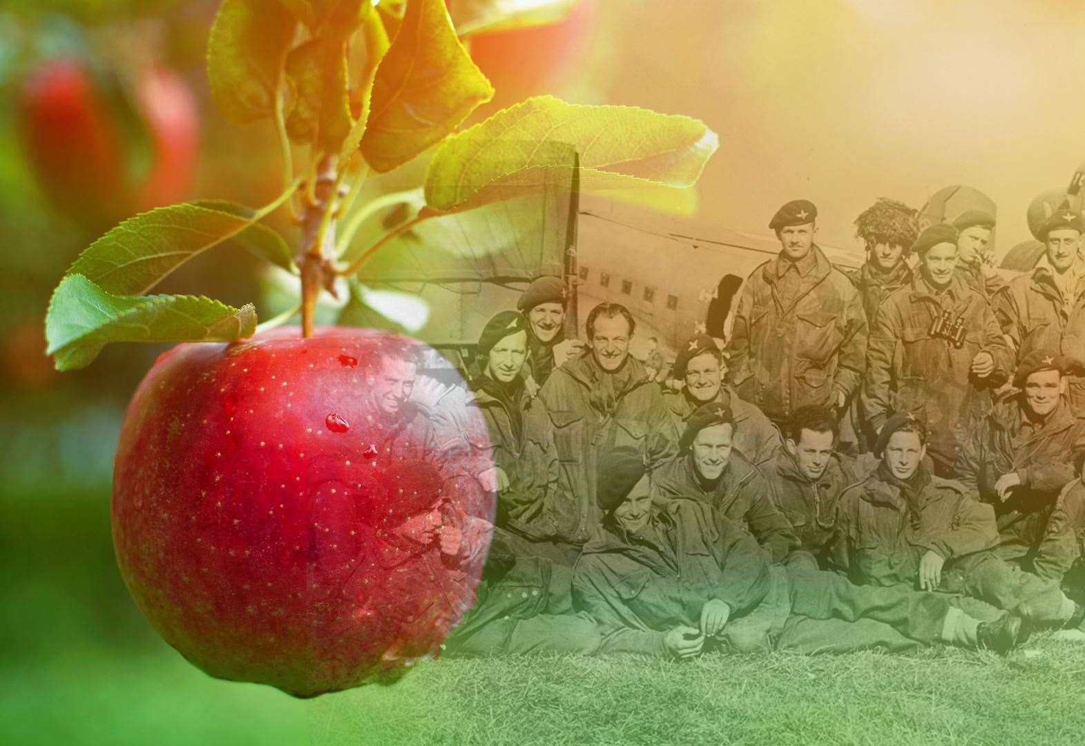 Appeal for donations to create commemorative orchard gets off to a flying start