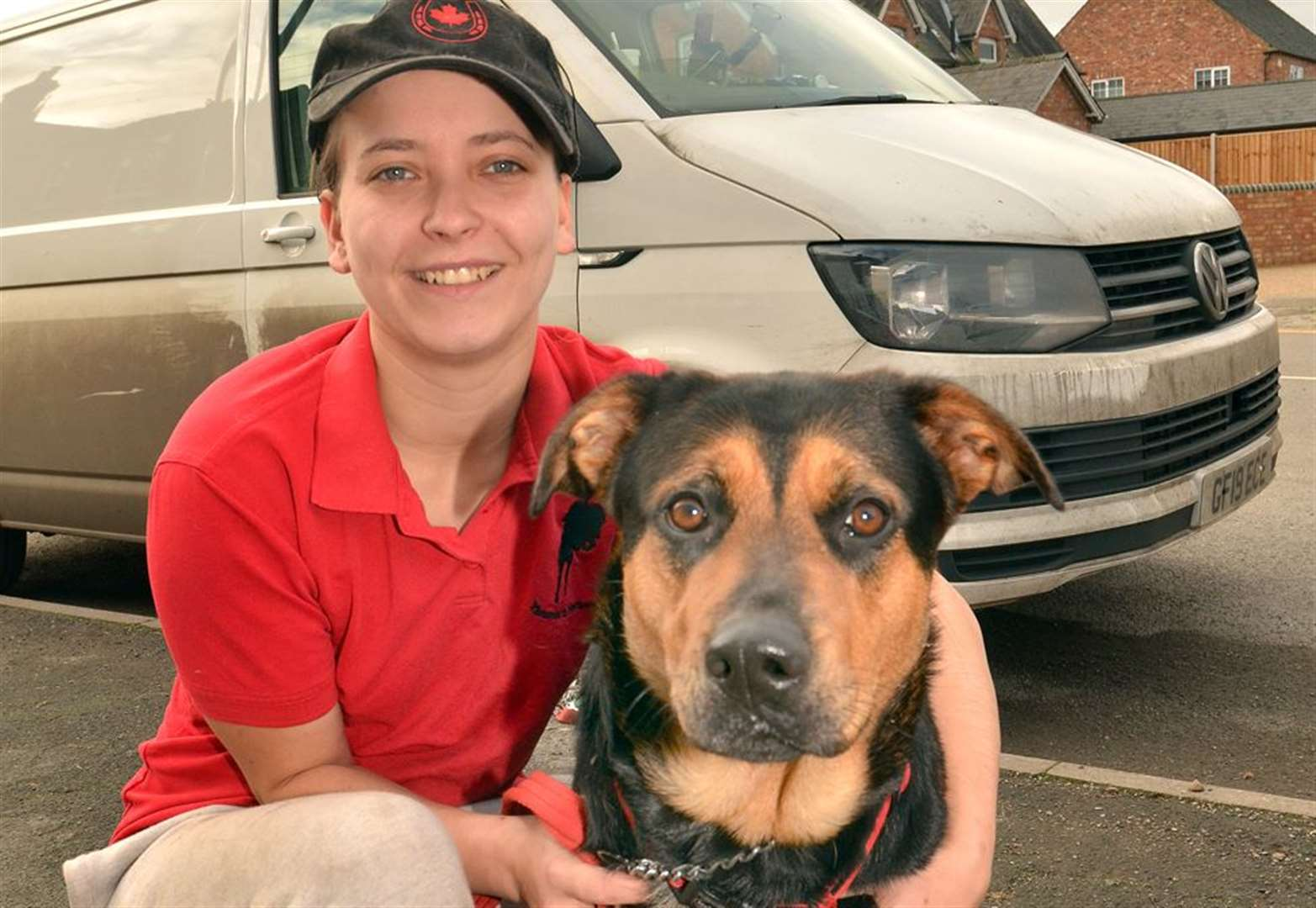 Hero dog foils thief's attempt to steal van