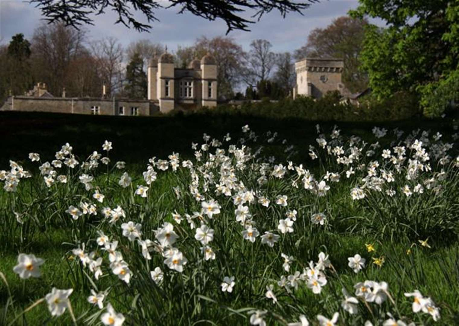 Easton Walled gardens open for Mothers' Day and Easter