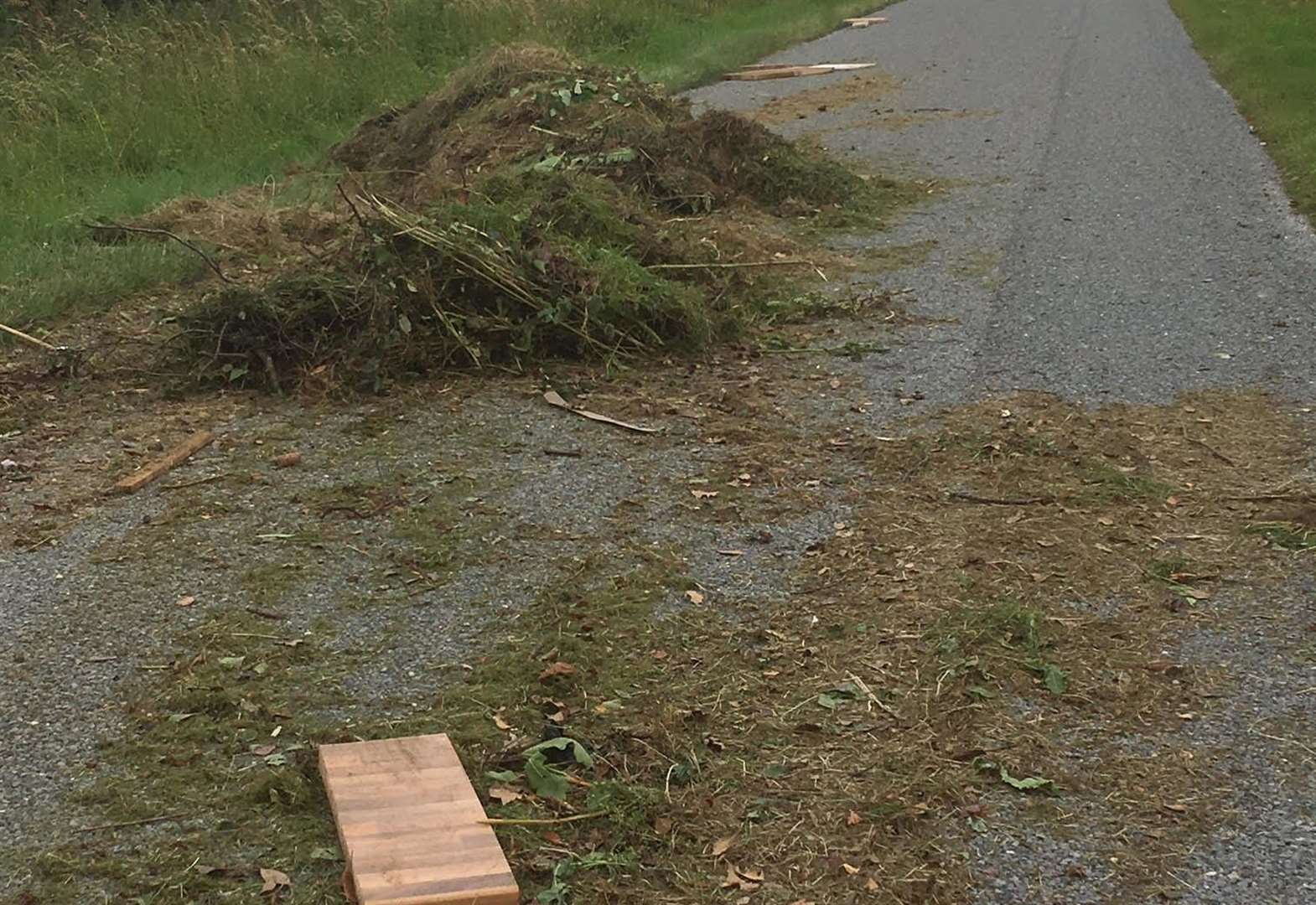 Fly-tippers dump garden waste in country road near Grantham