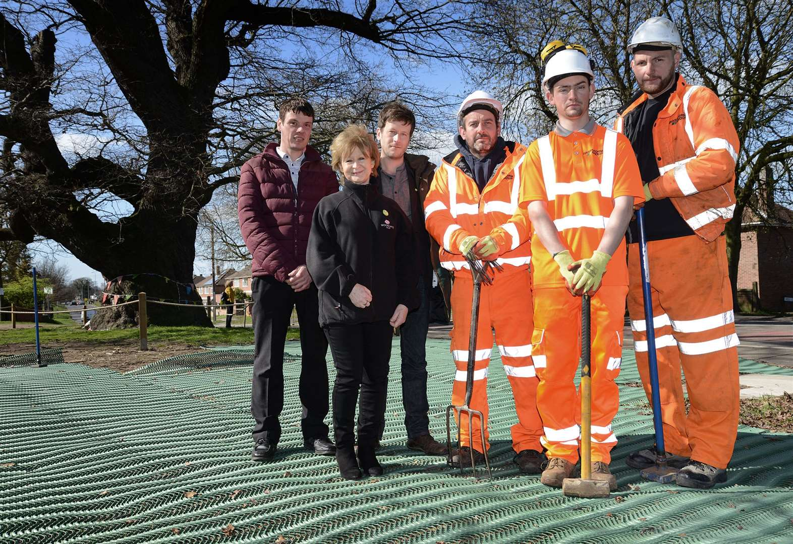 New surface will protect iconic Grantham oak