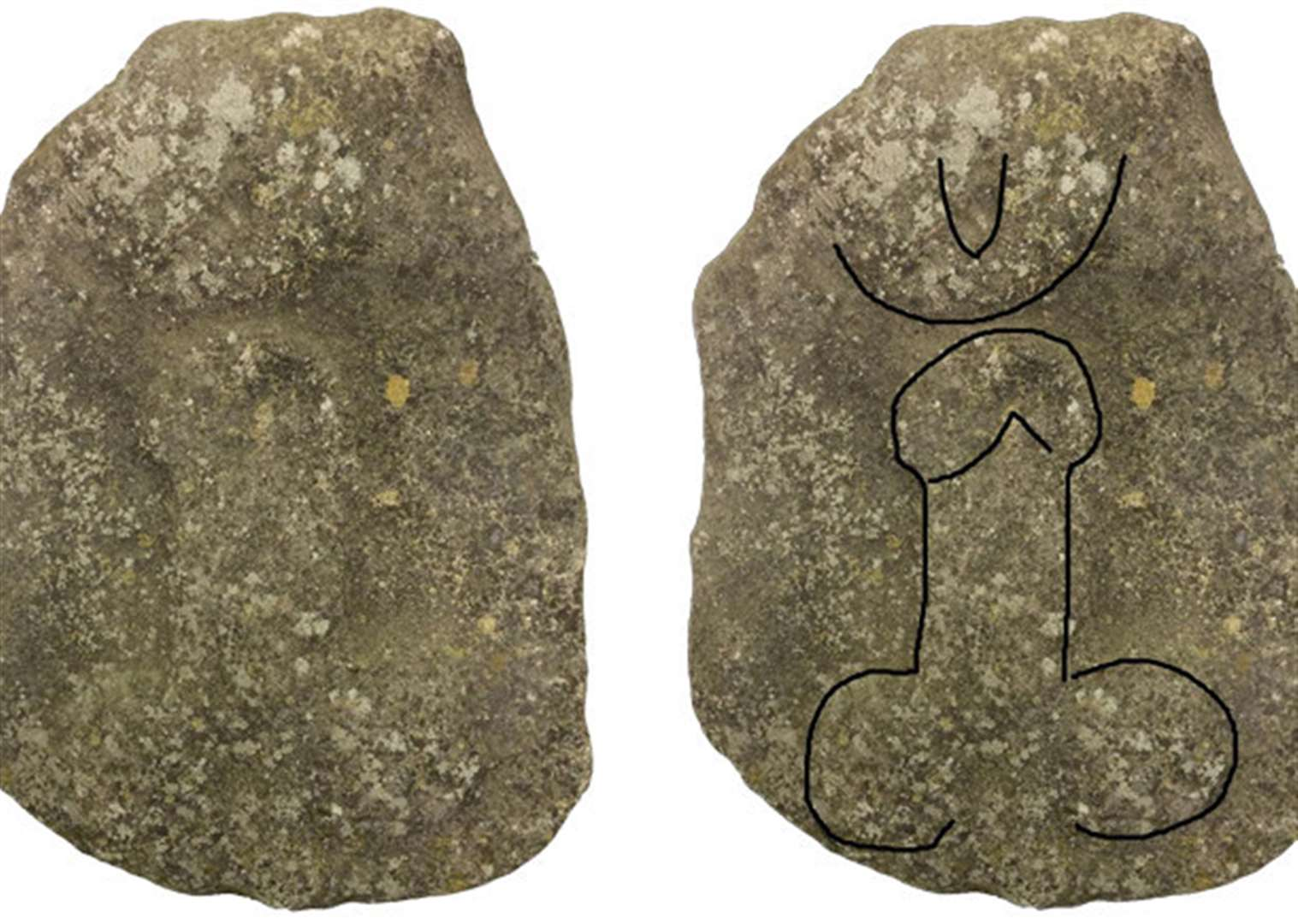 Roman carving of a phallus, found in village between Grantham and Sleaford, to go on display