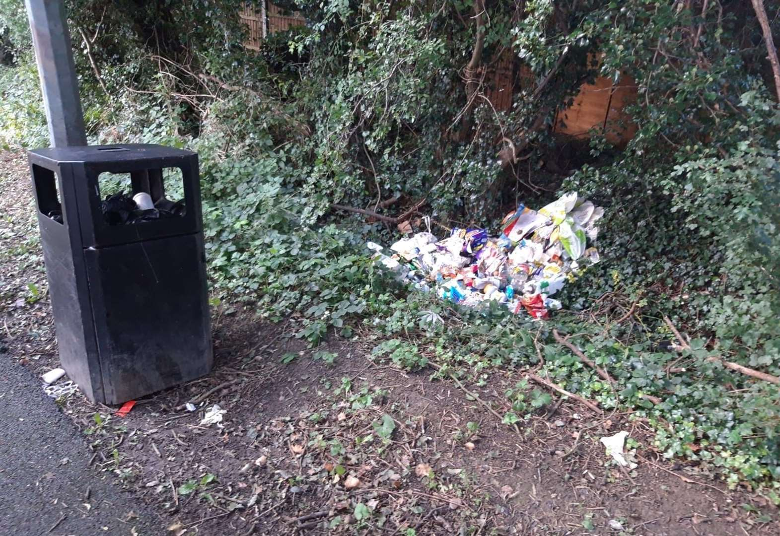 Resident disgusted after finding household rubbish dumped in lane