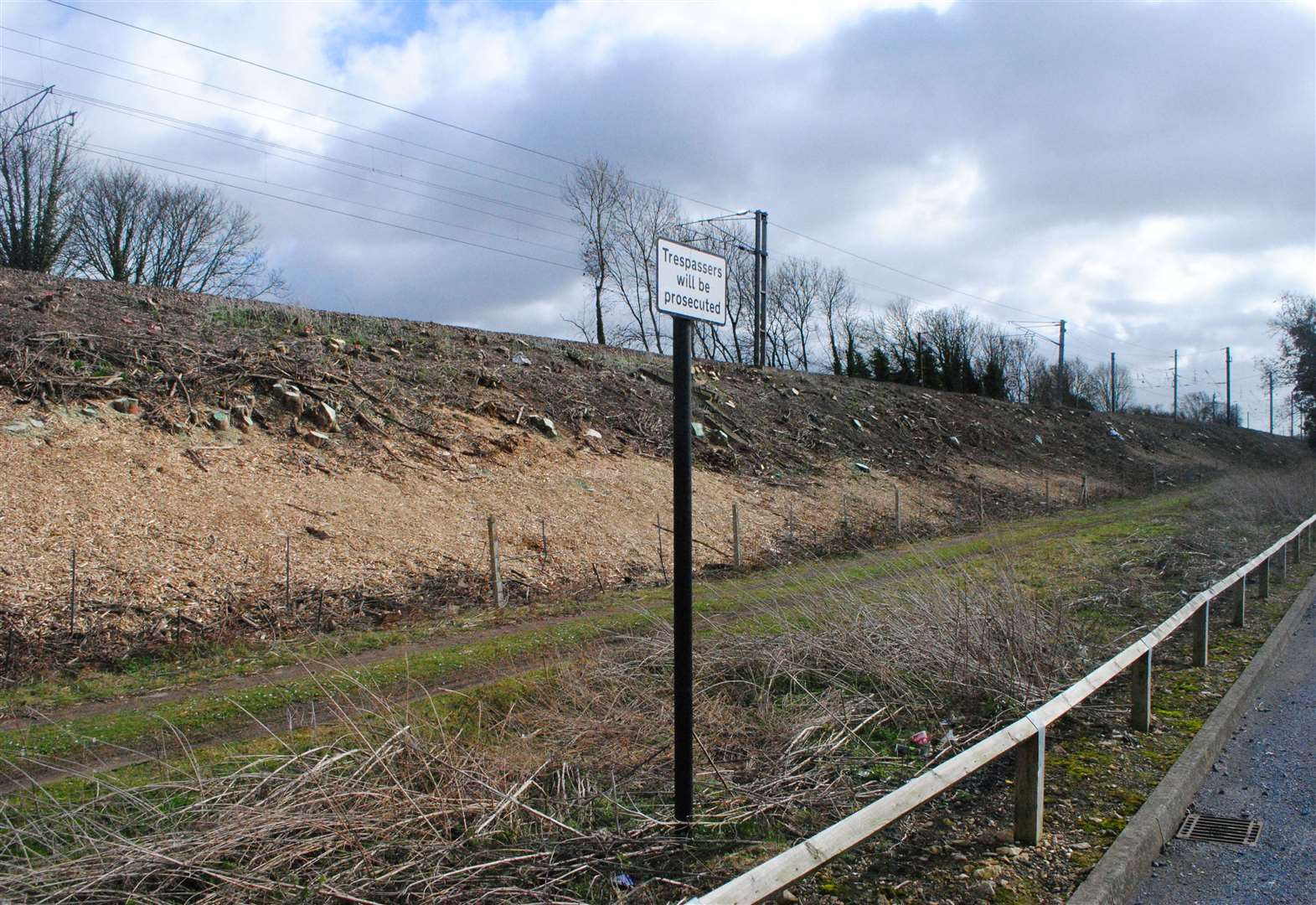 Scores of trees felled next to railway line in Grantham