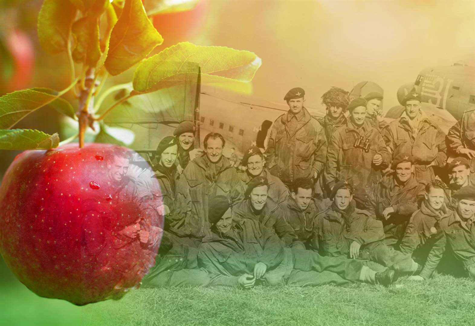 Appeal for Heroes orchard raises three quarters of funds ahead of February deadline