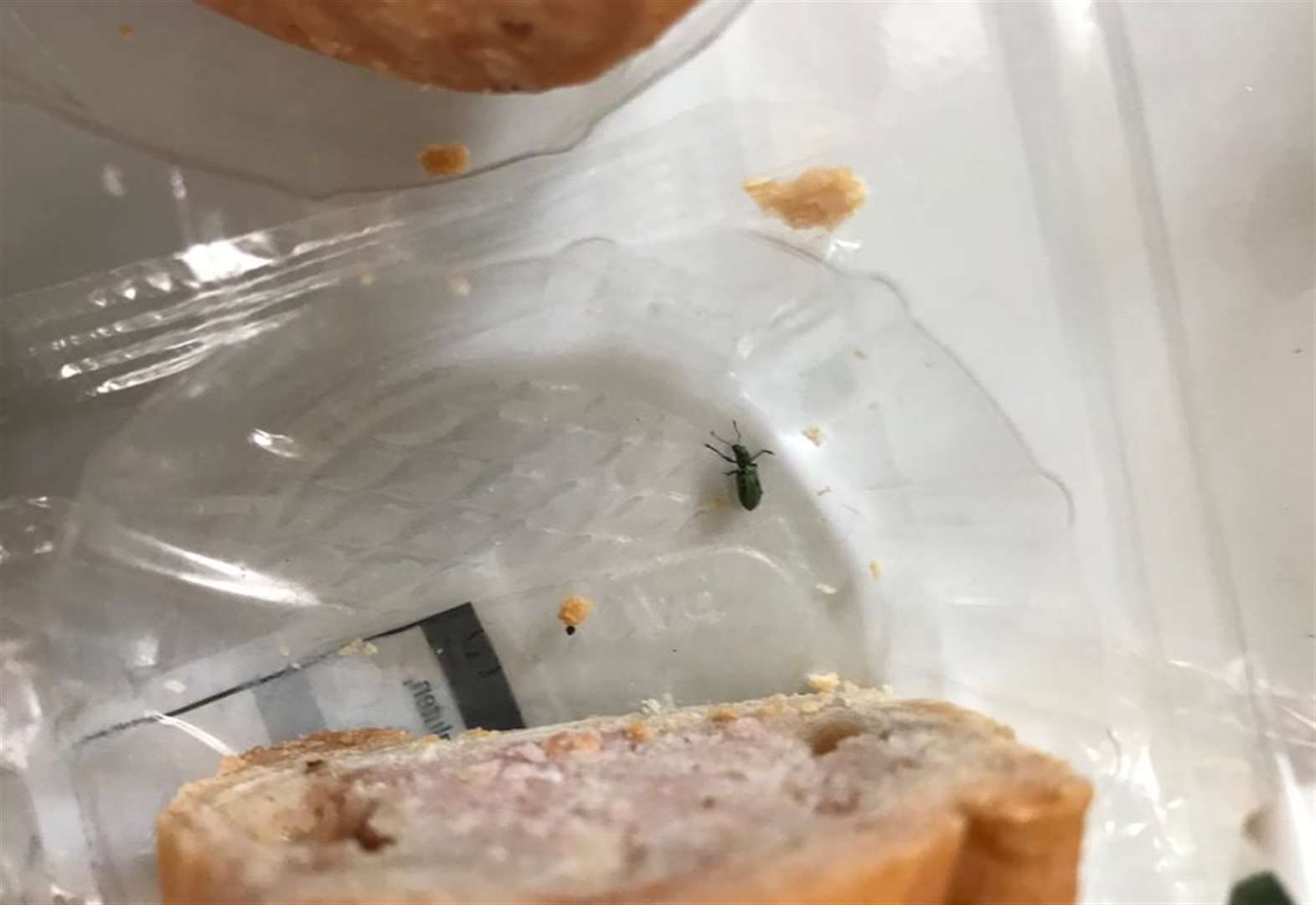 Woman finds beetle in pork pie from supermarket