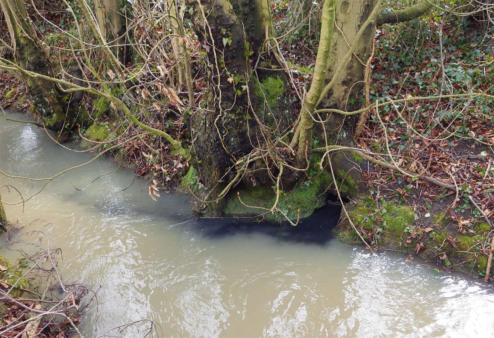 South Witham company fined for river pollution
