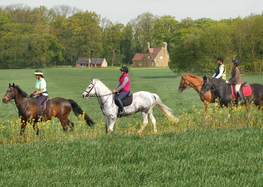Riders make their way through the Belvoir Estate countryside earlier this month