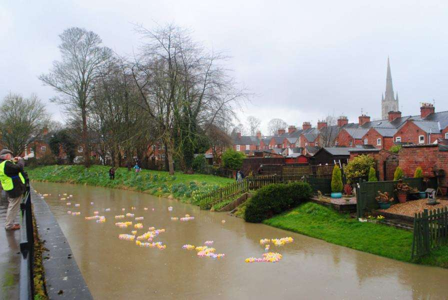 The ducks make their way down the Witham through Wyndham Park.