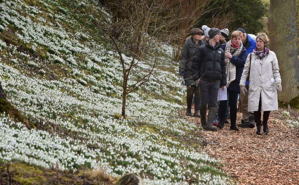Visitors enjoy a walk among the snowdrops at Easton Walled Gardens.