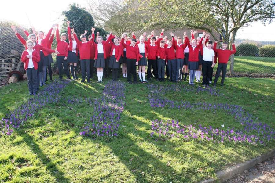 Pupils of Harlaxton Primary School with their blossoming purple crocuses.
