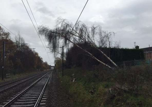 This fallen tree led to long delays to trains heading north of Grantham