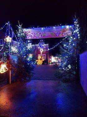 Grinch Christmas Lights.Ingoldsby Couple Transform Home Into Christmas Grinch Land