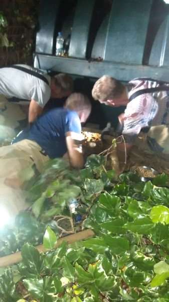 Firefighters rescue Gertie who was stuck under an oil tank.