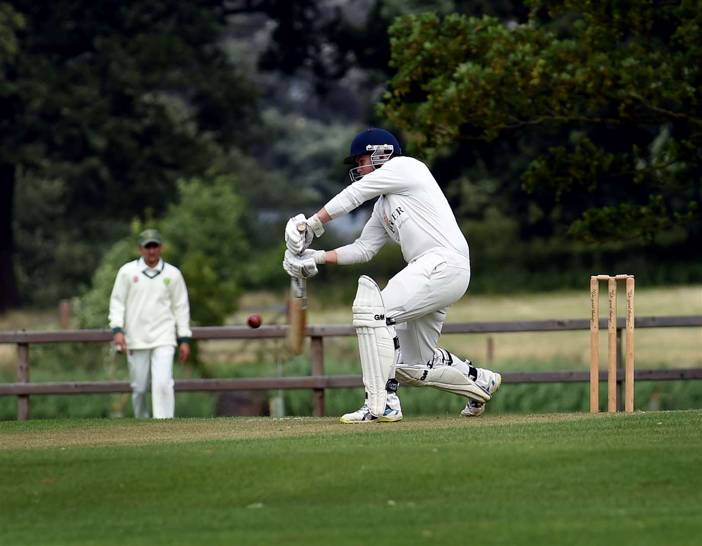 Shay Wilson batting for Belvoir. Photo: Toby Roberts (15172367)