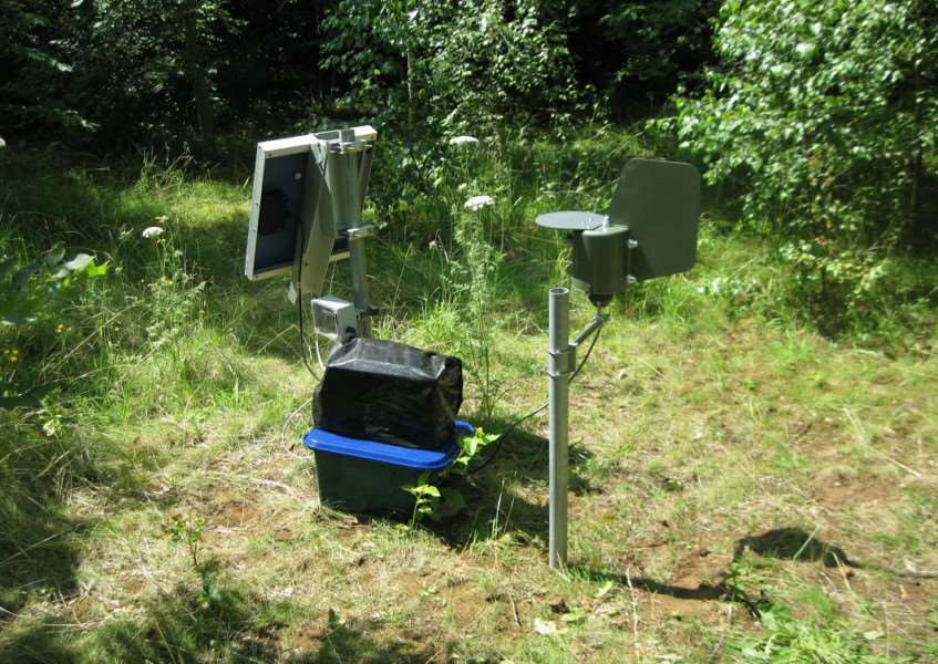 Equipment set up in Londonthorpe Wood to as part of research into ash dieback.