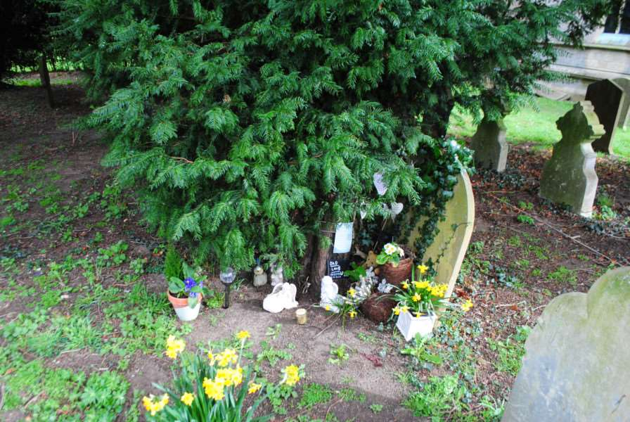 Trinkets left around the tree in the graveyard at St John's church in Manthorpe.