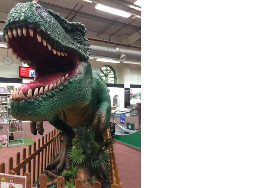 A dinaosaur is a new attraction at Downtown Garden Centre.