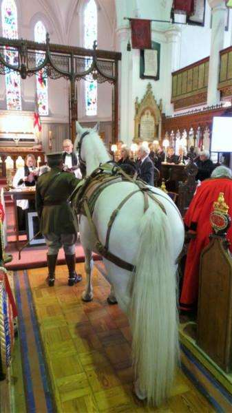 Maggie, a beautiful white horse, was led 'down the aisle for the war horse memorial service.