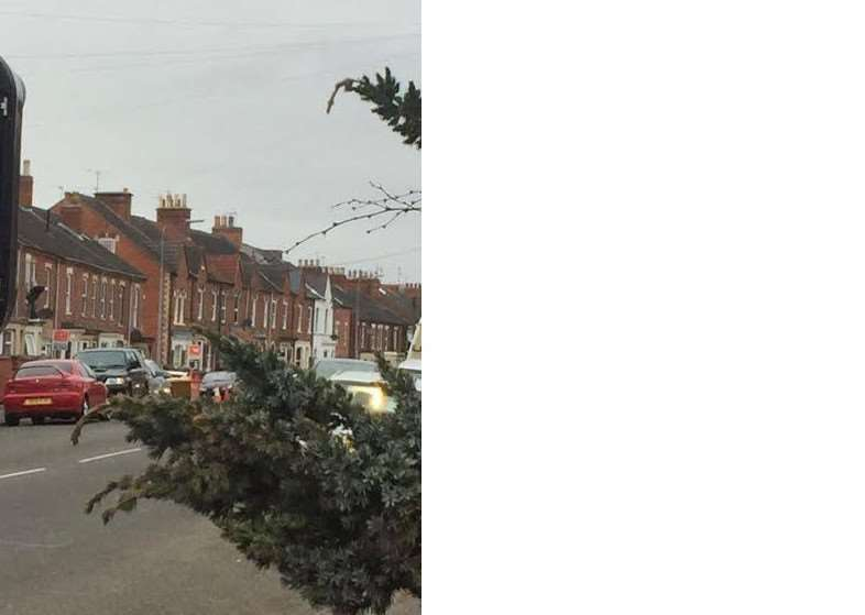 Photo taken by a passer-by on Harrowby Road.