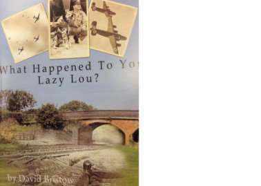 'What Happened to You Lazy Lou' book cover.