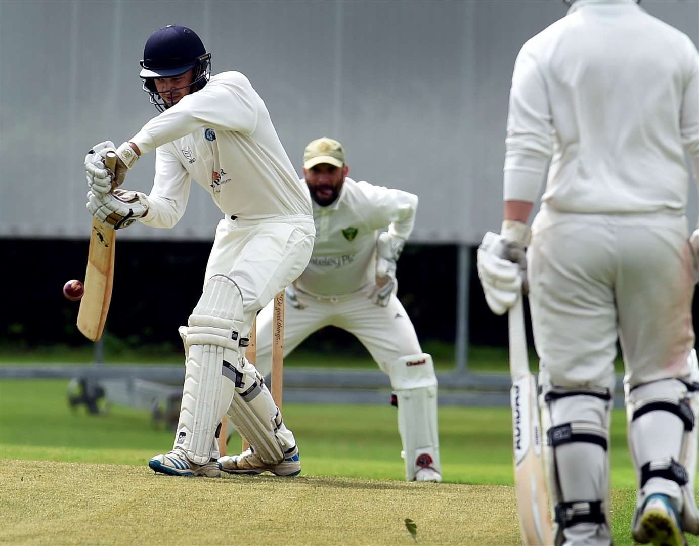 Dan Wilson batting for Belvoir. Photo: Toby Roberts (15172369)