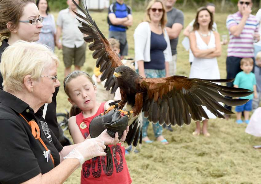 Knipton fete and duck race. Zoe Webster is pictured with Scooby the Harris hawk