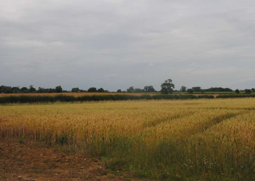 Land to the south of Denton has existing planning permission for mineral extraction.
