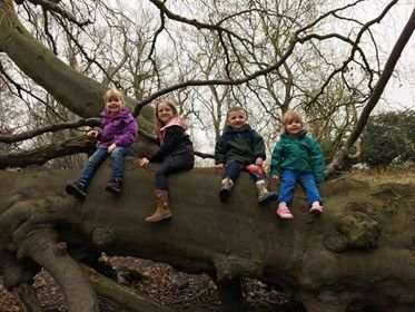 Beatrice Smeaton, Brooke Hamilton, Logan Hamilton and Harriet Smeaton pose for a photo on one of Belton's trees.