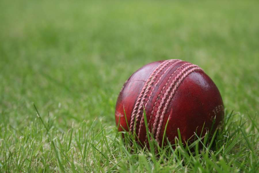 Cricket stock image ENGPNL00120110324141719