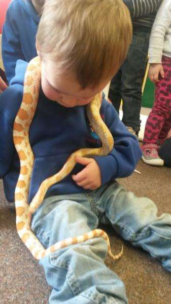 Harlie shows no fear when a snake is draped around his neck.