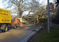 Tree blocks Manthorpe Road after being blown down.